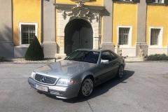Mercedes-Benz-SL-300-24V-Bj.-1992-231-PS-3000-cm³-6-Zylinder